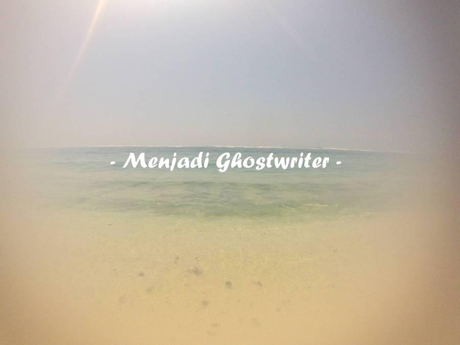 Ghostwriter, Apa Itu?